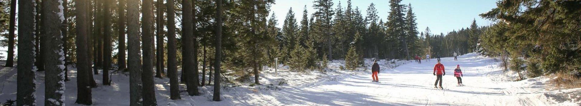 Pokrowiec na narty, dzięki któremu zabezpieczysz sprzęt w każdych warunkach