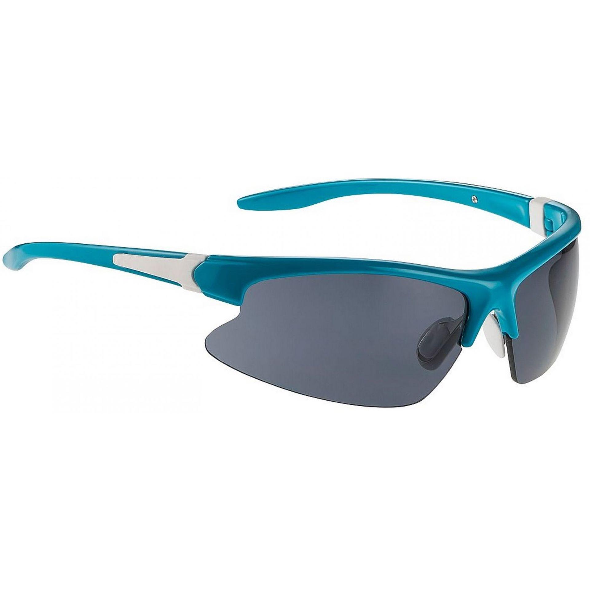Okulary Alpina Dribs niebiesko czarne