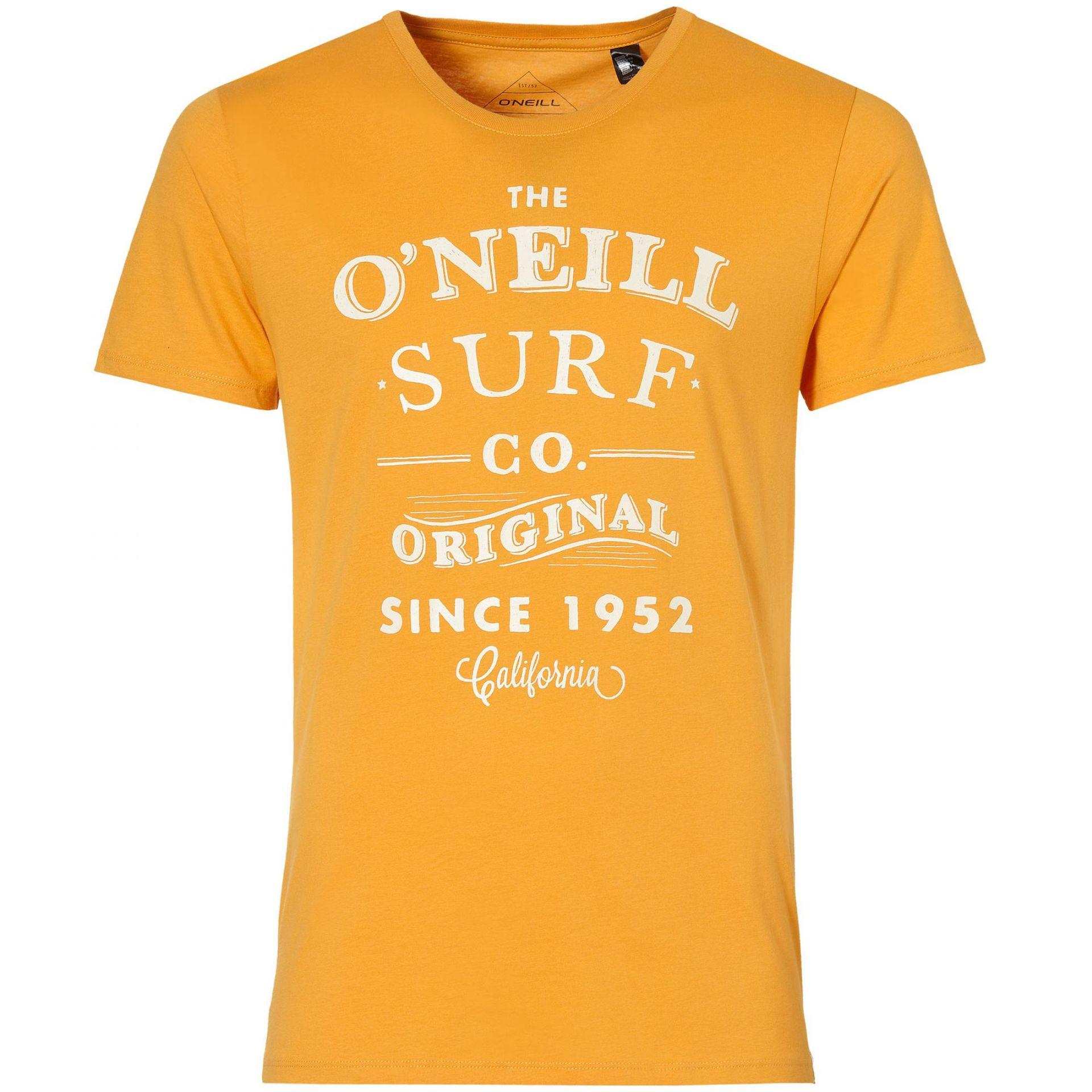T-SHIRT ONEILL THE ARC S SLV TEE
