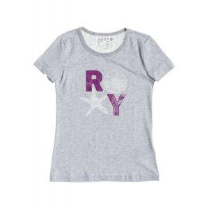 T-SHIRT ROXY  BASIC TEE RG B  2015 SZARY