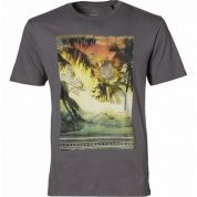 T-Shirt Oneill LM Paradise Tee szary