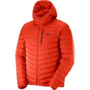 KURTKA SALOMON HALO DOWN HOODIE M ORANGE
