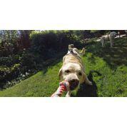 SZELKI DLA PSA GOPRO FETCH DOG HARNESS ADOGM-001 4